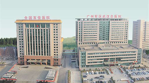 中国人民解放军武汉总医院